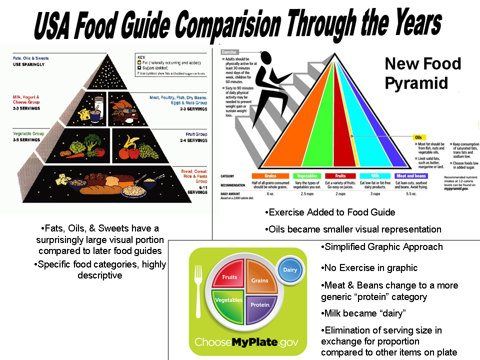 USDA Food Pyramid Replaced by Food Guide Dinner Plate